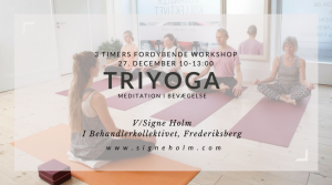Tri Yoga Workshop 27. dec 2017 Behandlerkollektivet